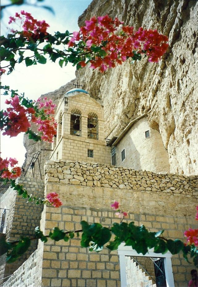 West Bank st george monastery flowers