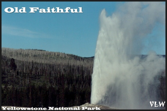 WY9 Old Faithful (2)
