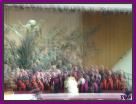 papal audience and beauty (2)