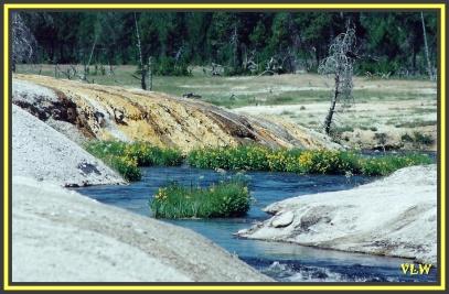WY5 Iron Spring Creek (2)