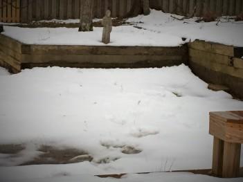 snow melting st francis 03 03 15
