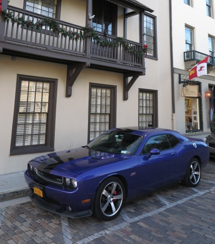 FL SA St George St purple mustang (2)