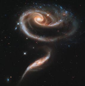 NASA_Rose_Made_of_Galaxies_Highlights_Hubble's_21st_Anniversary_jpg